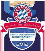 Stern des Südens Niederbayern e.V. | Logo